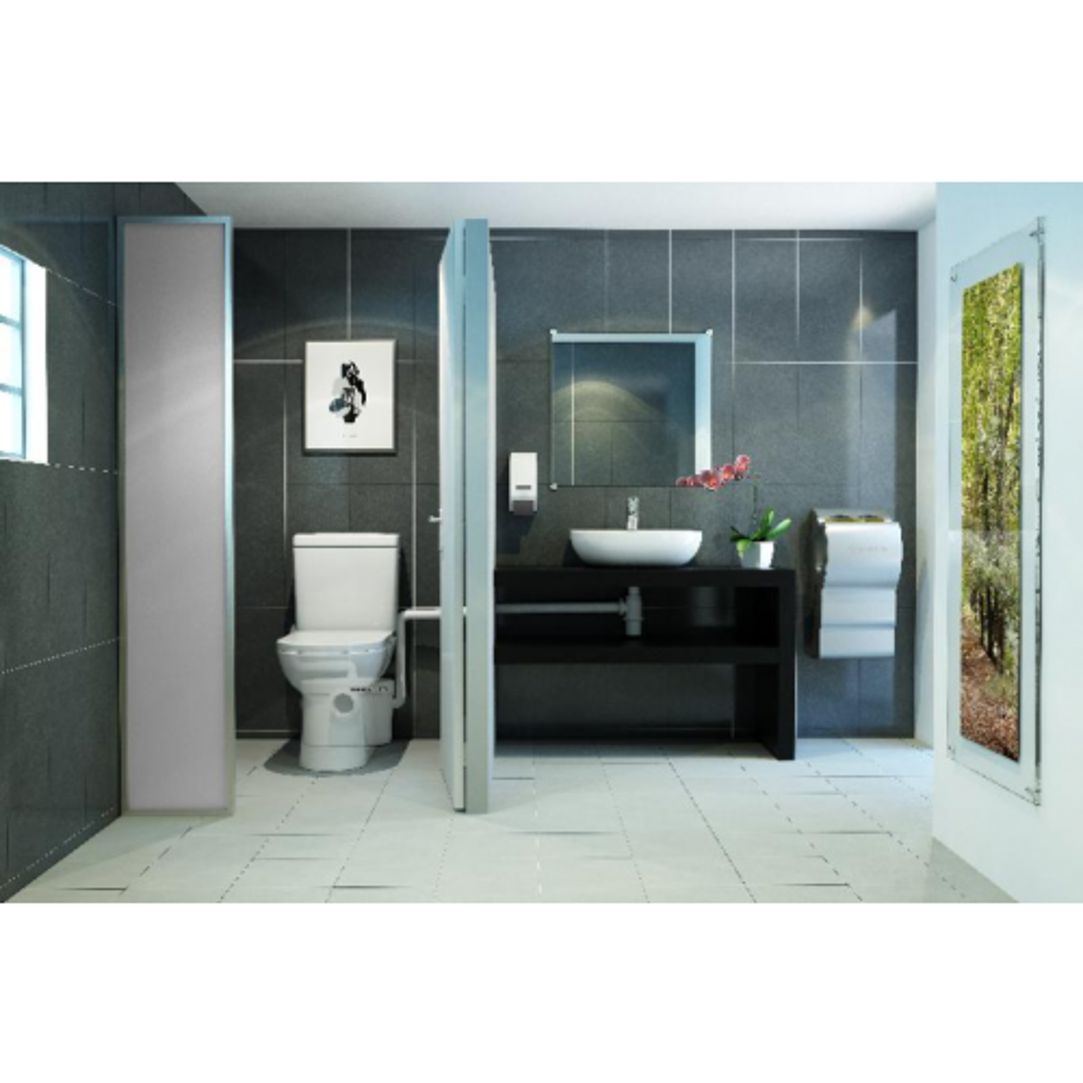 SaniAccess 2 SaniBroyeur toilet
