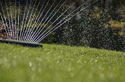 Sproei Installatie Tuin : Tuin besproeien lees hier welke pomp u nodig heeft